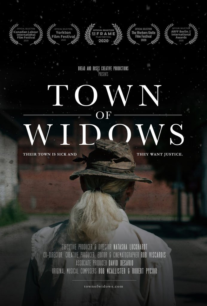 Town of Widows Cover